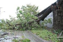 Cuba-Sandy-2012-36