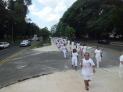 Damas de Blanco 11