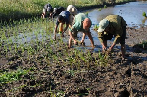 agricultura reformas